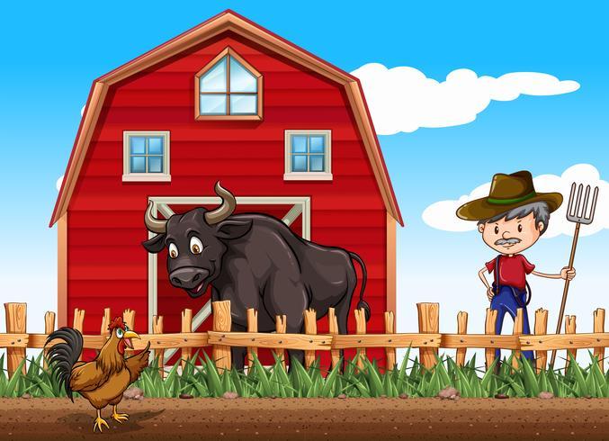Agricultor y animales en la granja.