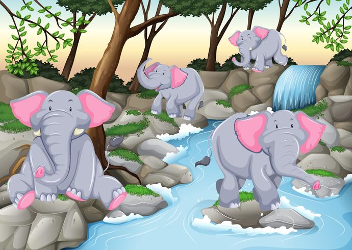 Four elephants at the waterfall - Download Free Vector Art, Stock Graphics & Images