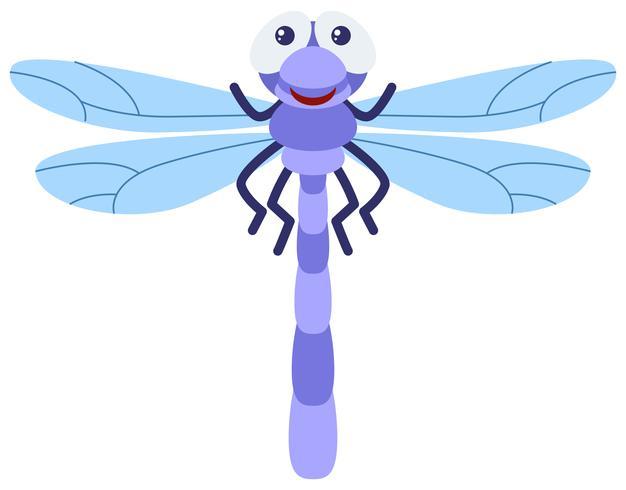 Libellule bleue sur fond blanc