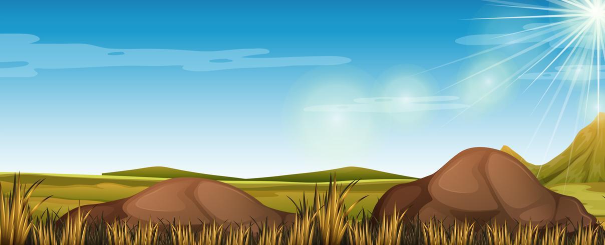 Escena de la naturaleza con campo verde vector