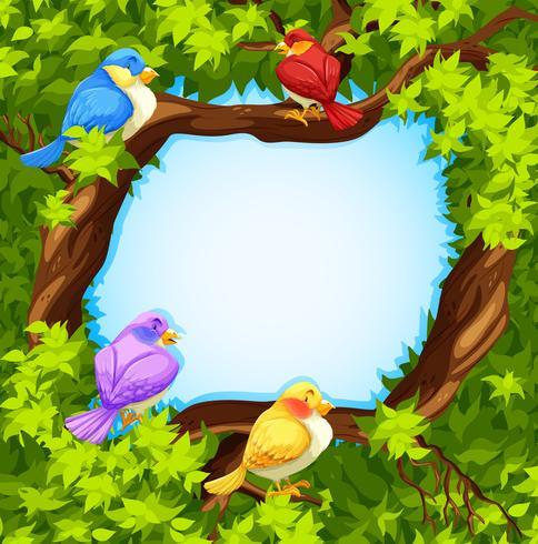 Diseño de la frontera con los pájaros en el árbol. vector