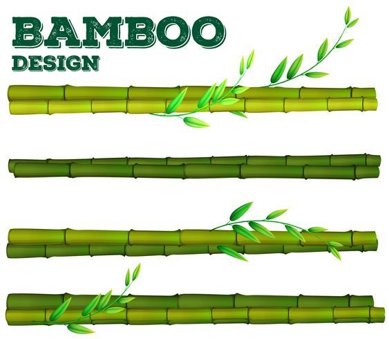 Diferente diseño de bambú con tallo y hojas. vector