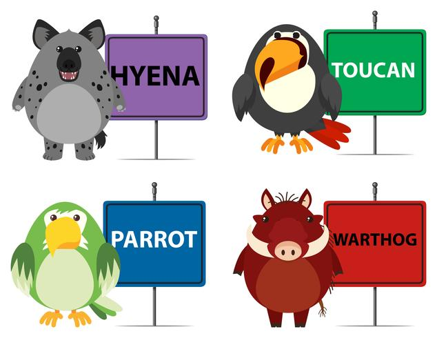 Four types of wild animals and signs vector