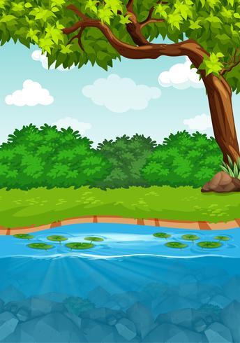 A river side landscape