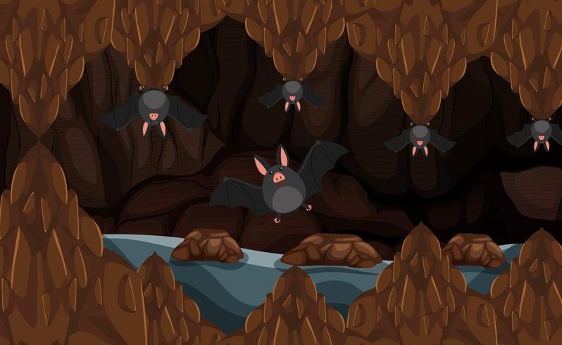 Cave souterraine avec chauves-souris