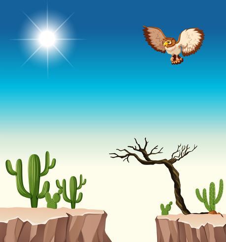Scena del deserto con gufo che sorvola il canyon