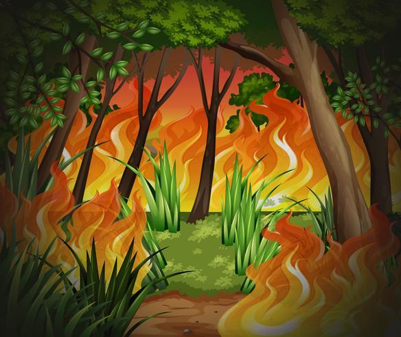 Gevaarlijke bosbrand achtergrond
