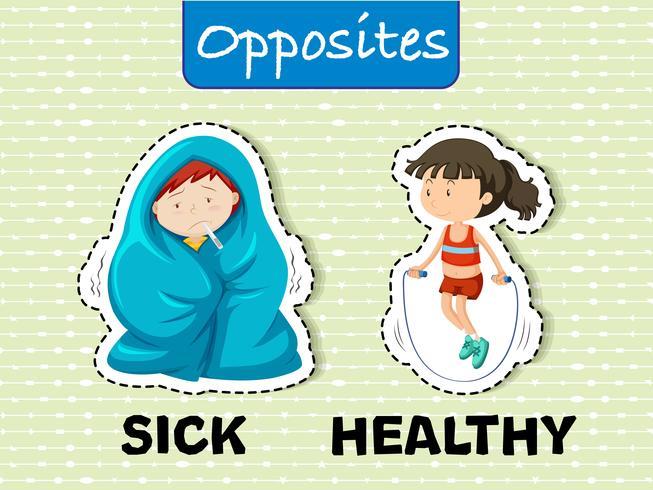 Zieke en gezonde tegenovergestelde woorden vector