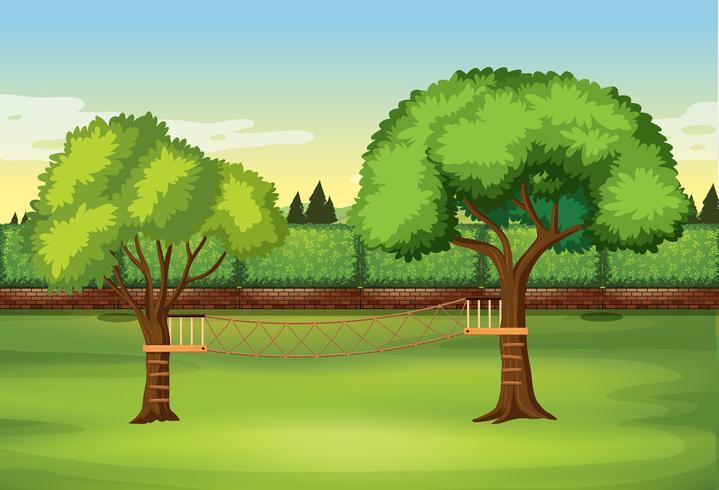 Escalera de cuerda en el árbol en la naturaleza