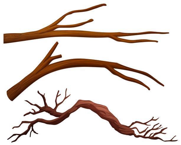 Un insieme di rami di albero vettore