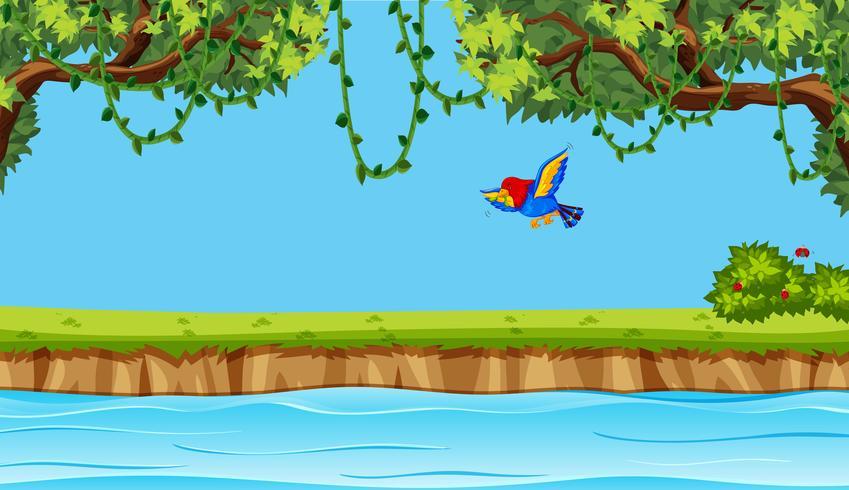Bird flying on nature background