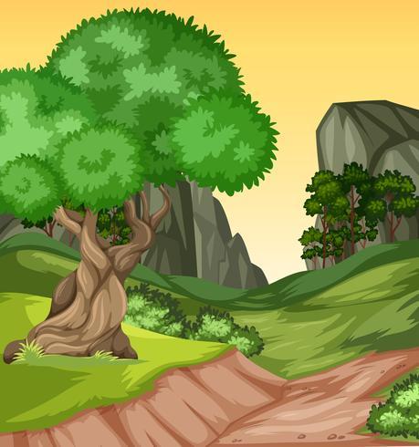 Vackert natur kulle landskap