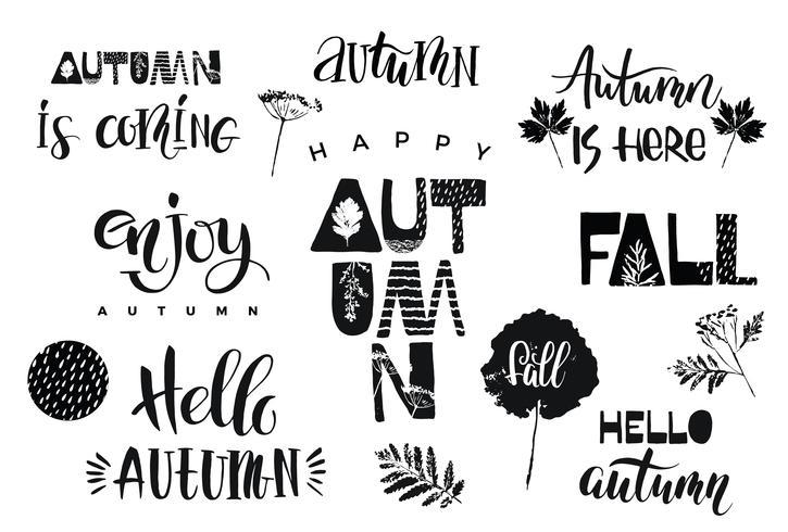 Autumn. Vector lettering design.