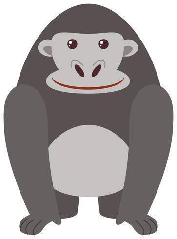 Gorila cinza em fundo branco