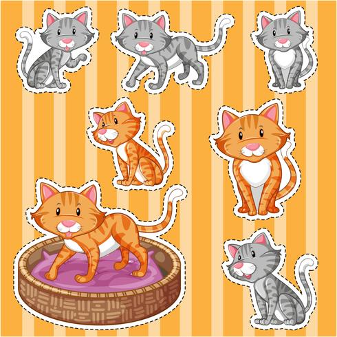 Sticker set with cute cats on yellow background
