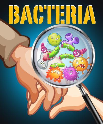 Bactérias em mãos humanas