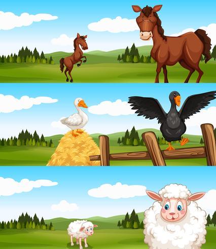Auf dem Bauernhof lebende Tiere