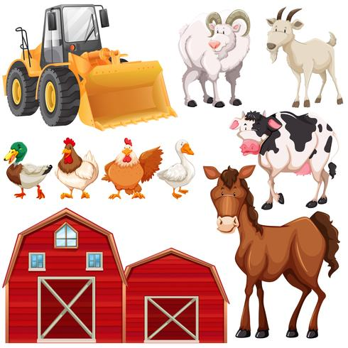 Set of farm animals and barns