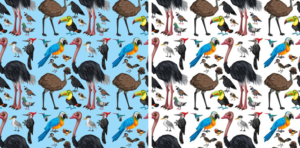 Seamless background with wild birds vector