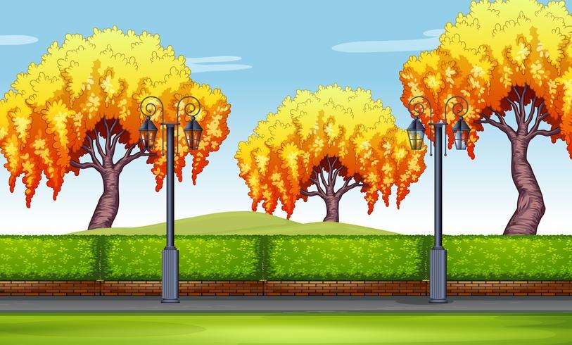 Scena con alberi di salice nel parco