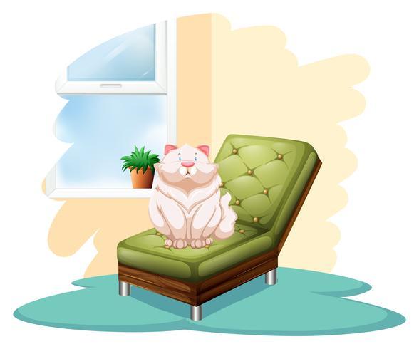 Katze über dem Stuhl