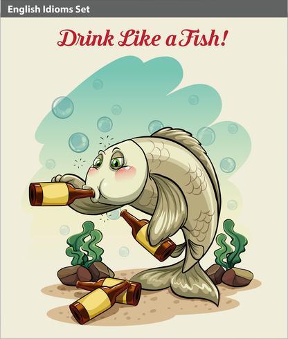 Dricker som ett fisk idiom