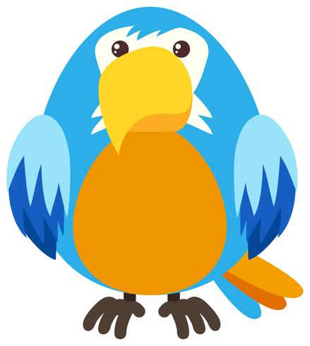 Blue parrot with happy face vector