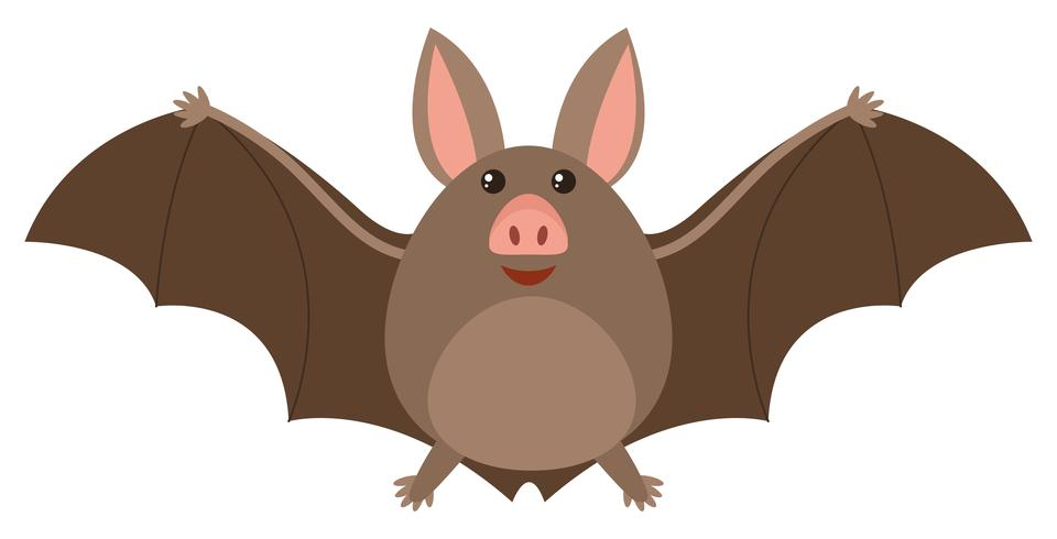 Brown bat with happy face