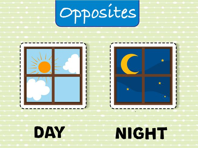 Opposite words for day and night vector