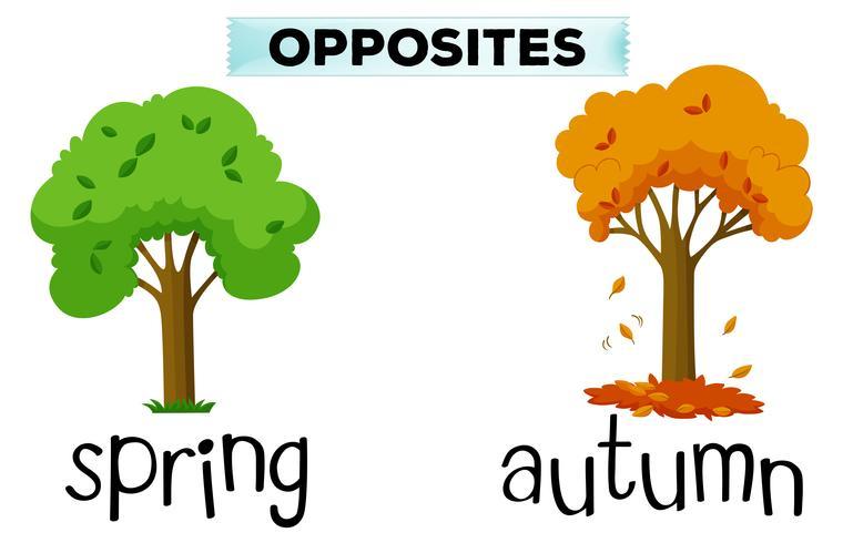 Palabras opuestas para primavera y otoño. vector