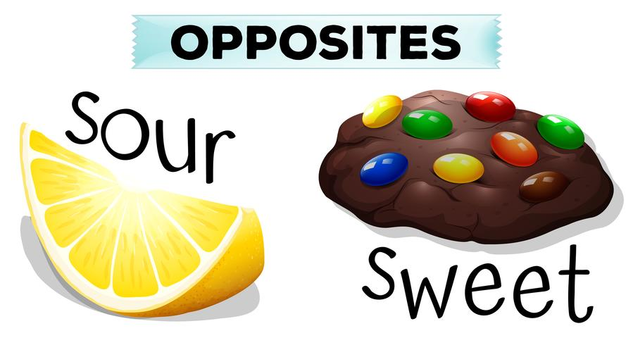 Opposite words with sour and sweet vector
