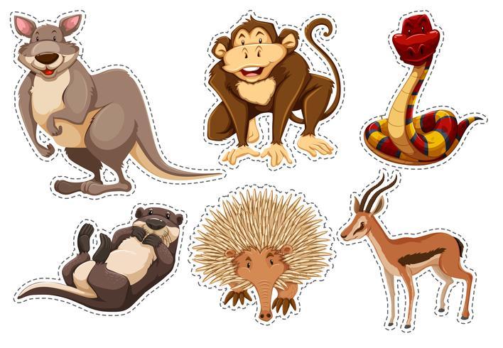 Adesivo definido com diferentes tipos de animais
