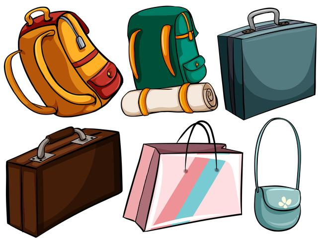 Different type of bags vector