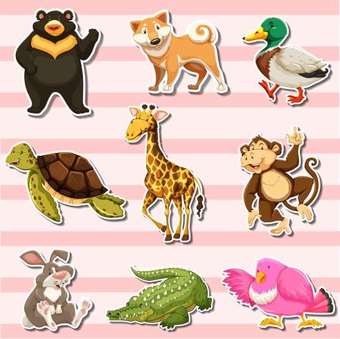 Juego de pegatinas con animales salvajes sobre fondo rosa. vector