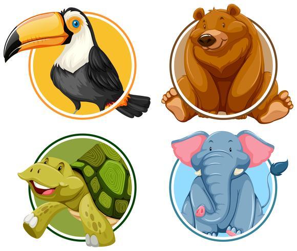 Set of animals banner