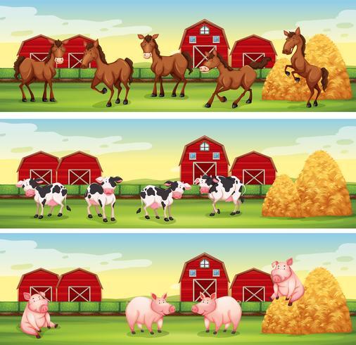 Animais de fazenda no quintal