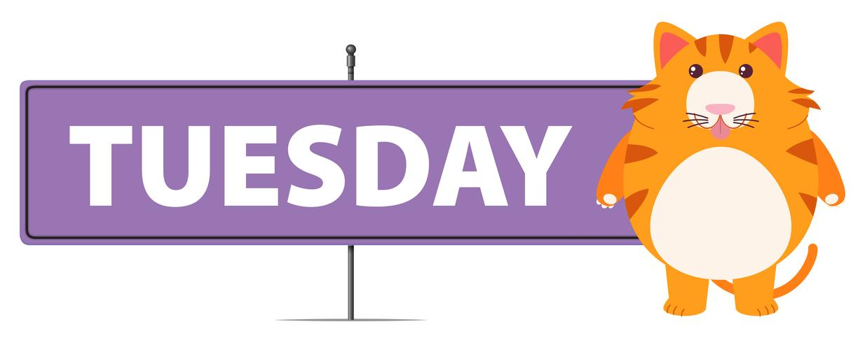 Tuesday sign with cute cat vector