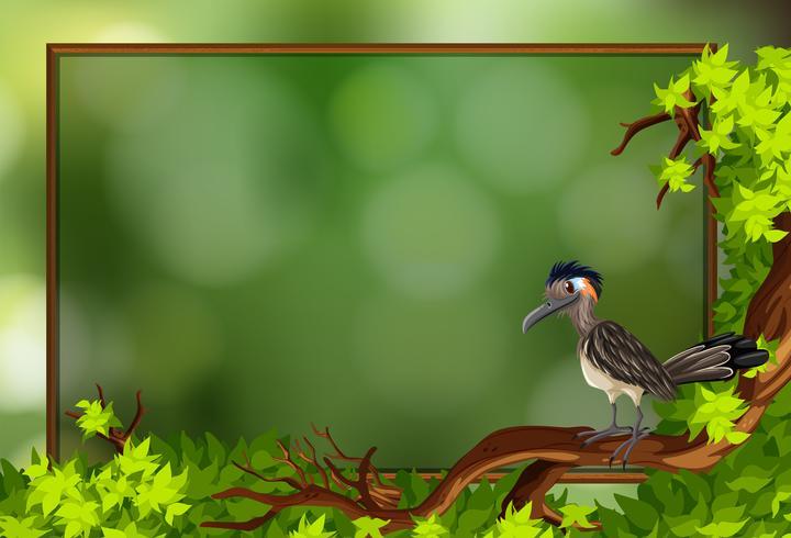 A roadrunner bird in nature frame vector