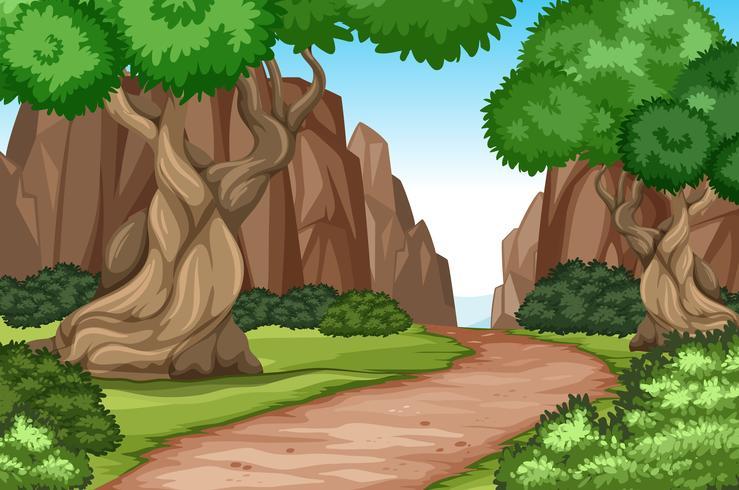 Plattväg i naturen