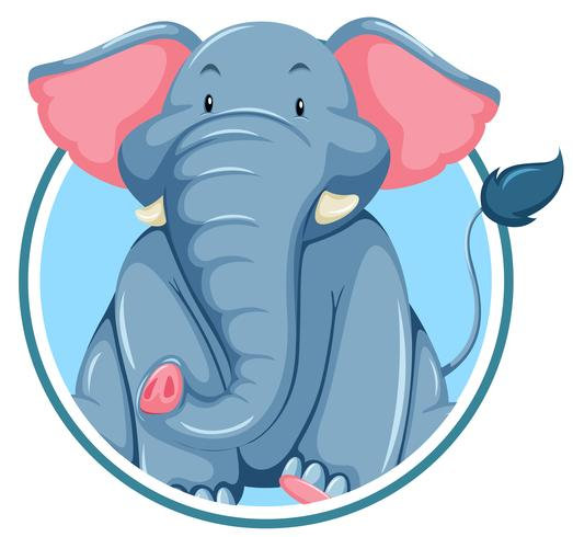 A elephant on sticker banner