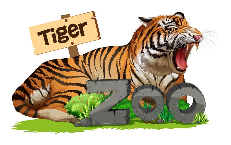 Wild tiger at the zoo sign