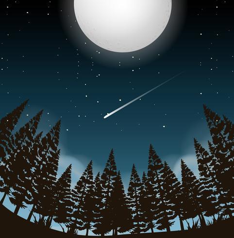 lua cheia sobre madeiras