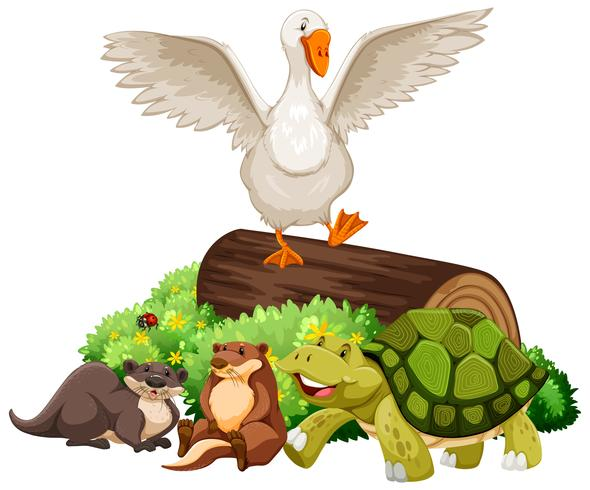 Tiere auf dem Holzklotz