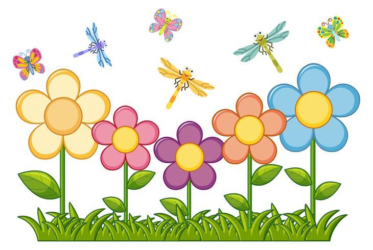 Butterflies and dragonflies in flower garden