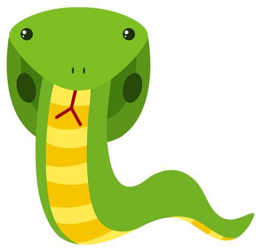 Cobra verde sobre fondo blanco