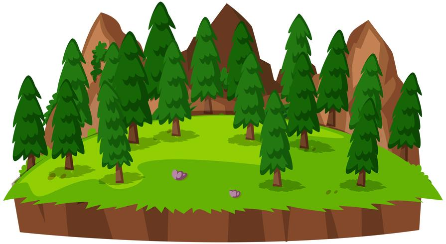 Paisagem verde natureza isolada