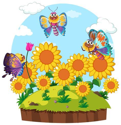 Borboletas voando ao redor do jardim de flores