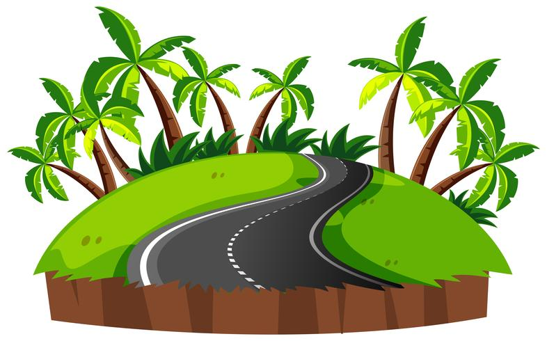 Road on an island