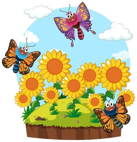 Scena del giardino con le farfalle nel giardino di girasole