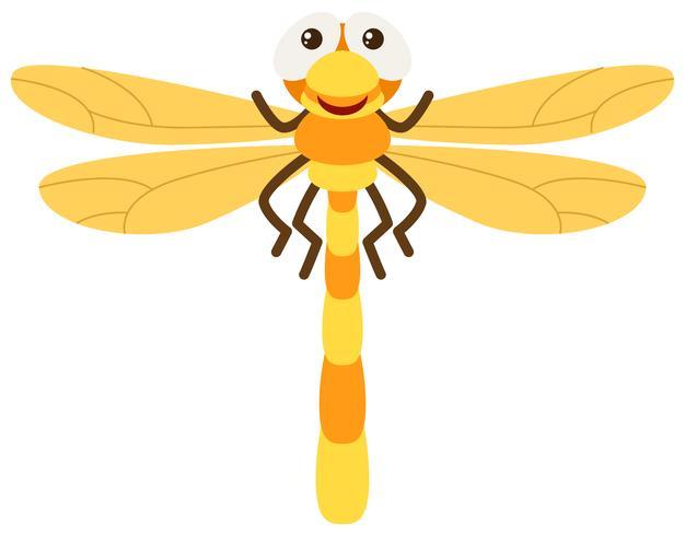 Slända med gula vingar